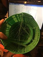 Name: 3F8E14C8-16AF-4006-9DEE-FD076A1F6AB0.jpg