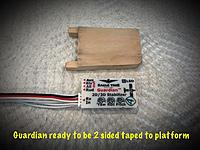 Name: Guardian next to platform,.jpg