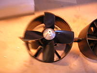 Name: DSCN5365.jpg