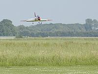 Name: Hawk landing.jpg