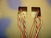 Name: DSCN9738.jpg