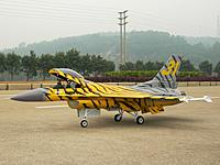 Name: f16a Yellow Tiger Meet color .JPG