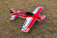 Name: P1000111.jpg