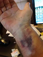 Name: 20190413_130807.jpg