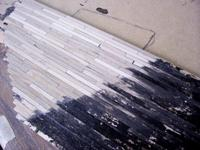 Name: 101_5402.jpg Views: 171 Size: 87.6 KB Description: Planked deck of real wood.  Retail will be fiberglass.