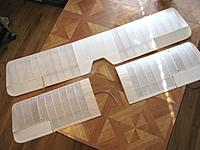 Name: wing5.jpg