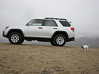 Name: IMG_2989_1_2_1.jpg Views: 394 Size: 114.0 KB Description: My dog in the rain at Weldon