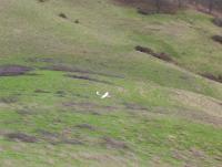 Name: Peterson Butte 11-12-05 008.jpg Views: 138 Size: 77.3 KB Description: