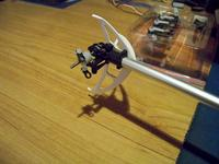 Name: 100_0105.jpg Views: 253 Size: 76.0 KB Description: tail close up