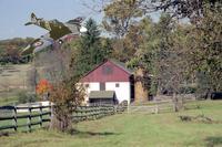 Name: Spitfire Back to the Farm.jpg Views: 194 Size: 111.5 KB Description: