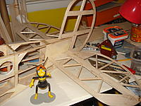 Name: DSC05475.jpg