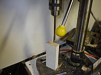 Name: DSC05751.jpg