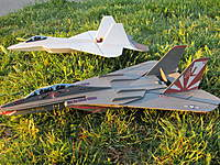 Name: IMG_0180.jpg Views: 148 Size: 144.6 KB Description: Pictured With 75% MDC F-14