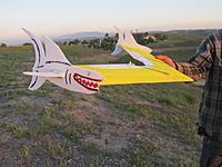 Name: jaws wing.jpg Views: 88 Size: 493.8 KB Description: V 1
