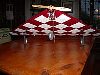 Name: IMGP0716.JPG Views: 15 Size: 2.53 MB Description: A 45 degree wing begs for diamond checkers!