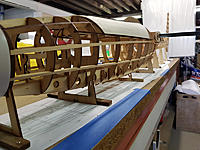 Name: Nose side.jpg