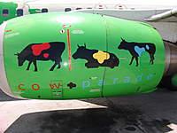 Name: cow-parade-LARGE[2].jpg Views: 290 Size: 65.0 KB Description: