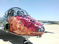 "Name: 07021243.jpg Views: 1288 Size: 68.6 KB Description: BAC-167 ""Strikemaster""  called the ""Dragon"""