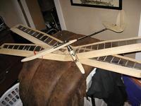 Name: LilBird 005.jpg Views: 213 Size: 79.7 KB Description: Doculam wings.
