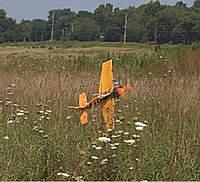 Name: Bob Edge 6.jpg Views: 36 Size: 46.8 KB Description: Mmmmmmmmmmmmmmm........... chopping daisies