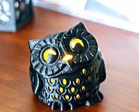 Name: owl2.JPG Views: 25 Size: 135.4 KB Description: