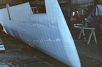 Name: ion-05 (18).jpg