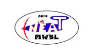 Name: MWBL sortie decl.png Views: 74 Size: 157.8 KB Description: