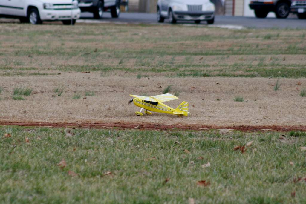 Name: zland3IMG_4834.jpg