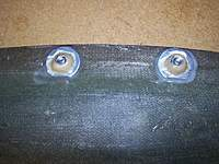 Name: Mold Nuts 002m.jpg