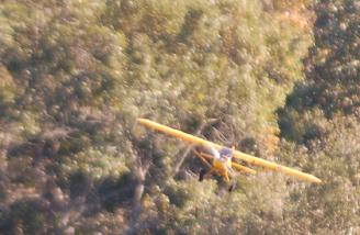 Bush flying is what the Super Cub was designed for..