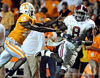 Name: 8989628-standard.jpg