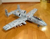 Name: A-10-digicamo0003.jpg