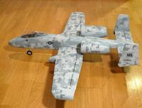 Name: A-10-digicamo0008.jpg