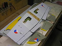 Name: L-39 wing 018.jpg