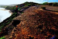 Name: DSC_5837B.jpg Views: 87 Size: 215.5 KB Description: Long Reef, South Slope
