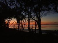 Name: toog7.jpg
