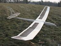 Name: Model glider low angle.jpg