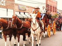 Name: 024.jpg Views: 183 Size: 62.8 KB Description: More Rodeo Parade