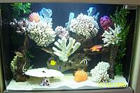 Name: SLOPE 013.jpg