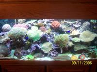 Name: thumb------06nov_ 080.jpg