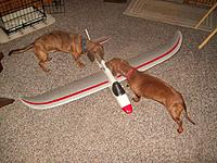 Name: 100_1083.jpg Views: 217 Size: 138.1 KB Description: Checked out by my flight crew before launch.