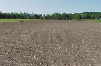 TEMAC field shortly after it had been leveled and grass was plated.