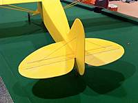 Name: cub-7-tail.jpg