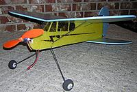 Name: Dart-Cub (3).jpg