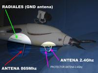 Name: Antenas Easy_Glider_02.jpg Views: 495 Size: 41.6 KB Description: Example good position antennas