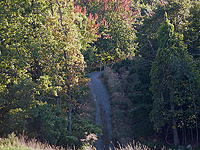 Name: Gude steep road.jpg Views: 89 Size: 184.4 KB Description: road to ?