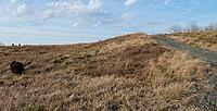 Name: Gude Slope.jpg Views: 104 Size: 44.1 KB Description: The slope~