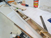 Name: IMG_3831.JPG