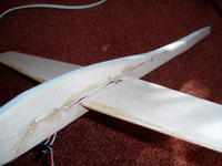Name: P9130001.jpg Views: 98 Size: 84.5 KB Description: Servo wires then slipped under. Wing CA'd on then sealed with hot glue.