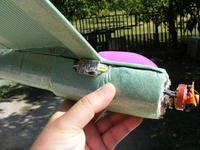 Name: 2008_0909Trainer0002.jpg Views: 1546 Size: 94.5 KB Description: The ESC is on outside for good cooling.